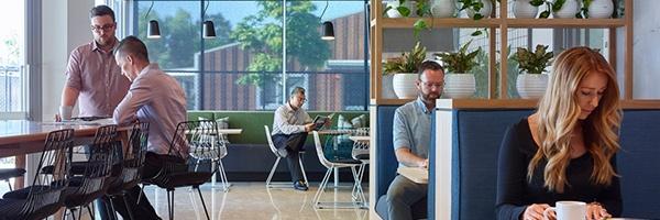 Flexible Workspaces - Hanson Brisbane
